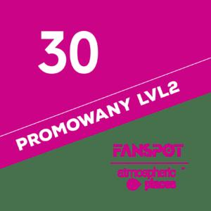 30-promo-lvl2
